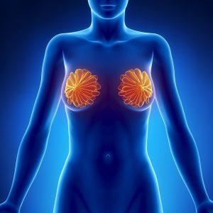 Cursus global de prise en charge du cancer du sein